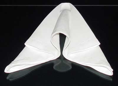 Napkin Fold #7 & How to fold napkins