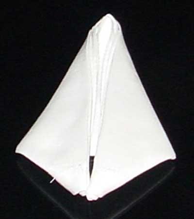Napkin Fold #7