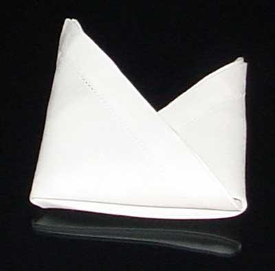Napkin Fold #10
