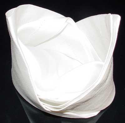 Napkin Fold #11