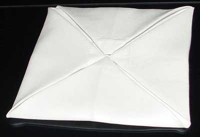 Napkin Fold #5