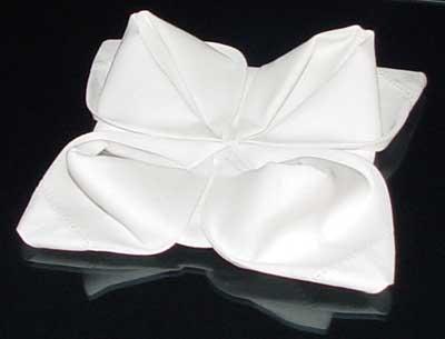 rosenapkinfolding09.jpg