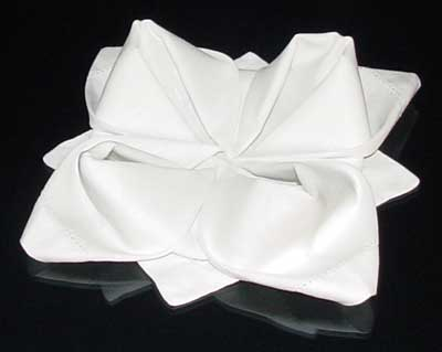 Instructions for Rose Napkin Fold