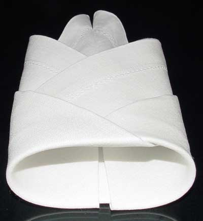 Napkin Fold #9