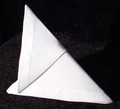 Slide Folded Napkin