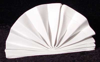 The Standing Napkin Fan Fold