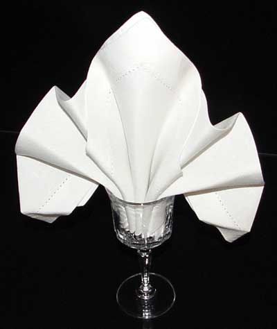 Image result for napkin in a glass