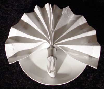 Napkin Ring Fan Fold