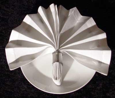 Napkin Ring Fan Fold