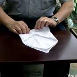 handkerchiefmouse